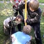 Apfel Baum Kinder
