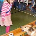 Hund 1. Klasse Futter Marlene
