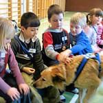 Hund 1. Klasse schnuppern