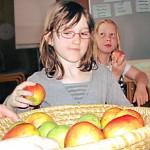 KH 19 Äpfel