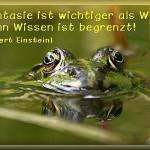 frosch1 H